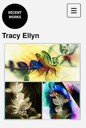 tracy ellyn fine arts recent works artileaf series ophthalmology series orchid series as without so within refuah series books louvre scope art basel steven sotloff memorial miami