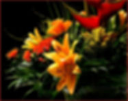 bouquet-of-flowers-262866_960_720.jpg