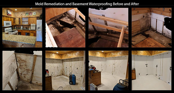 Mold and basement cleaning.jpg