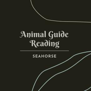 Animal Guide: Seahorse