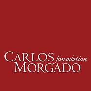 P3Carlos-Foudation-Morgado.png