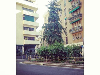 L'aiuola di Via Varese