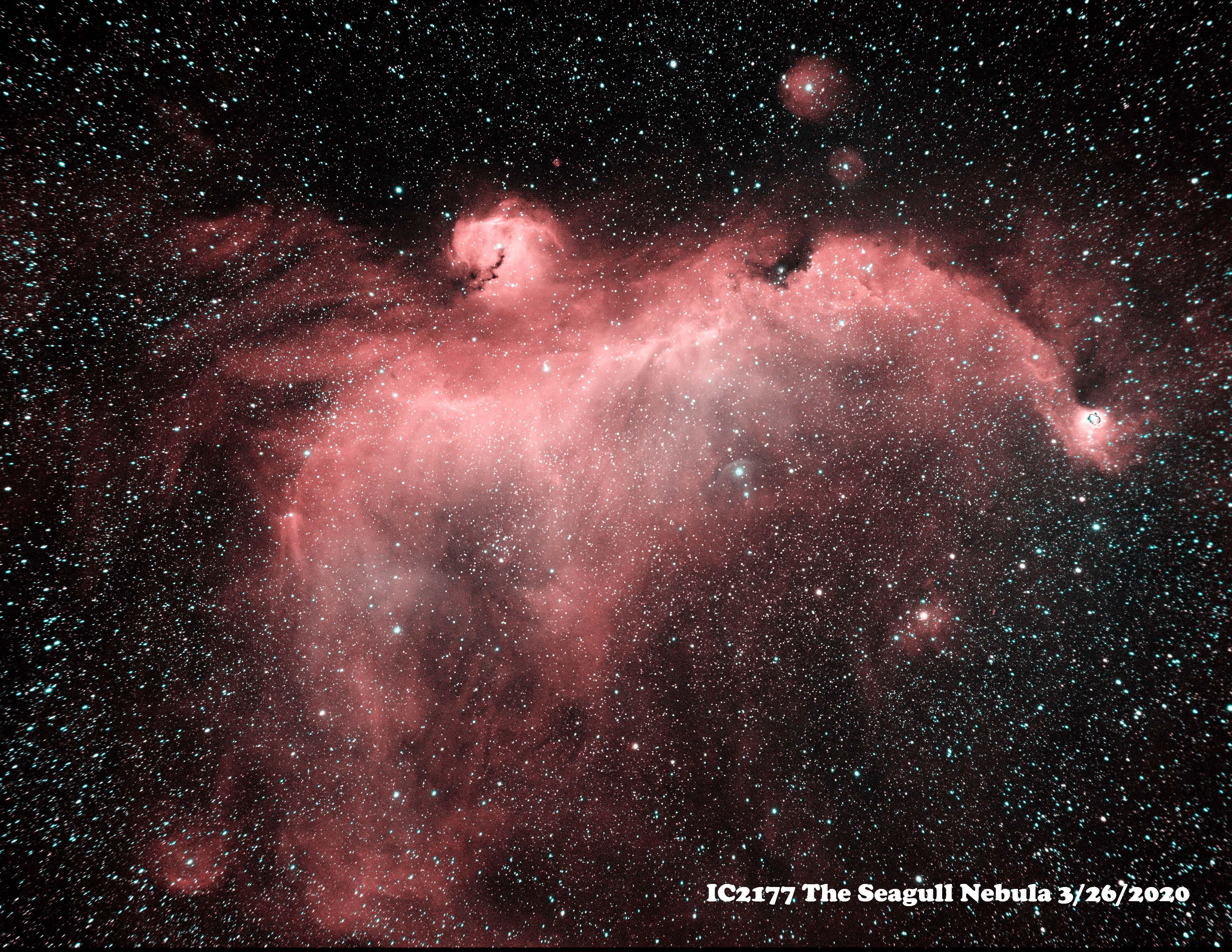 IC2177 HaOiii 3-2020