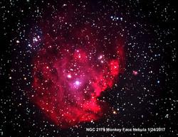 NGC2175 Monkey