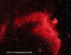 IC 2177 HaOiii