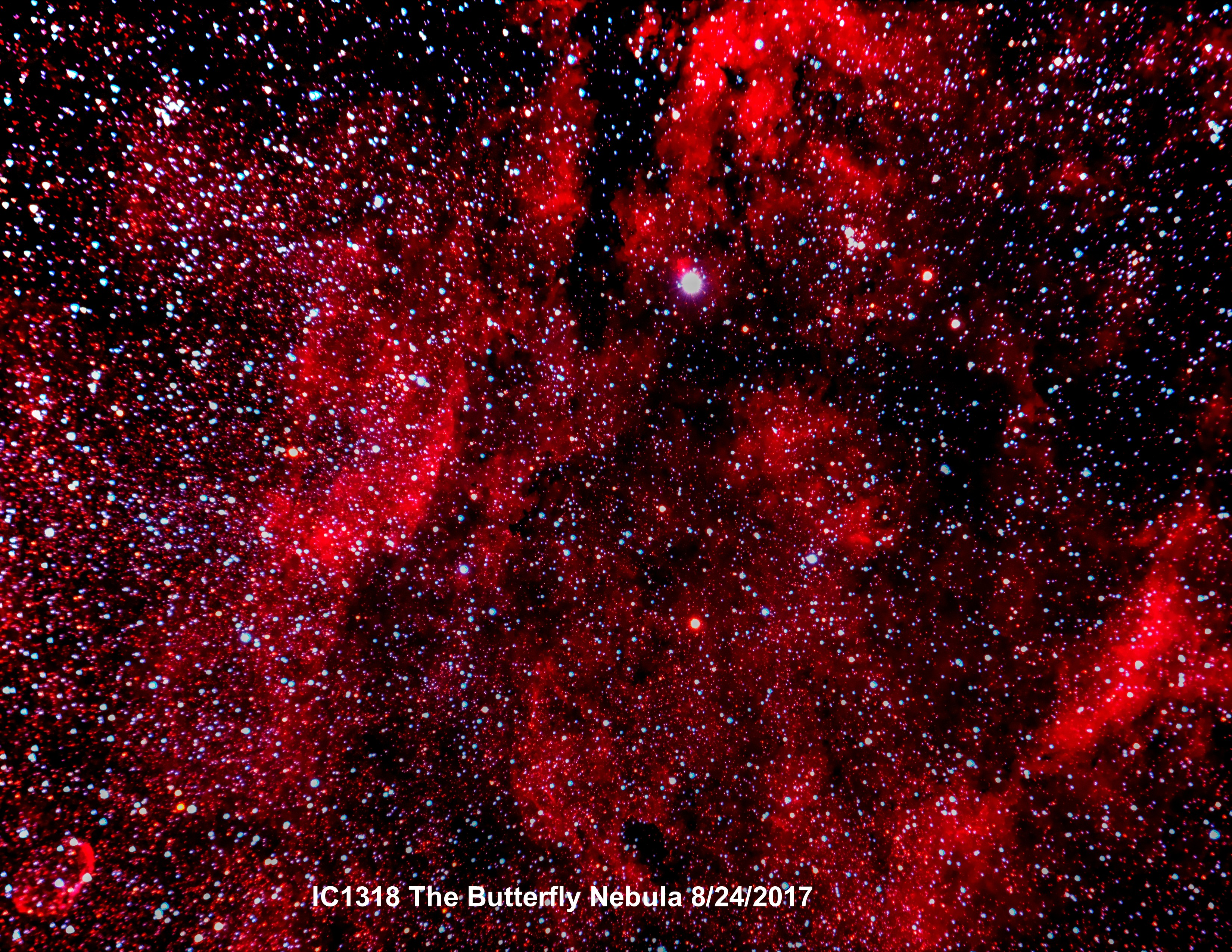 IC 1318 Butterfly