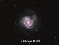 M 61 LRGB