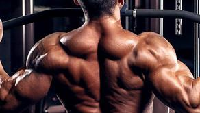 Come allargare le spalle in palestra