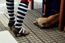 Pets vs. Meat