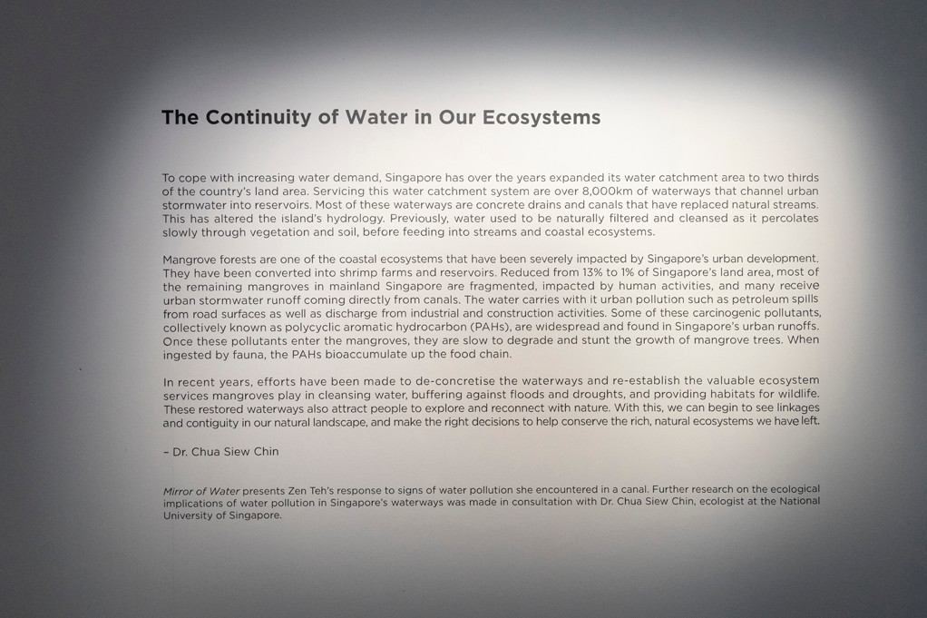Mirror of Water is the culmination of an interdisciplinary investigation into the ecological implications of water pollution in Singapore through my collaboration with ecologist, Dr Chua Siew Chin of National University of Singapore.