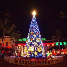 🎄クリスマス ナイトツアー🎄_12月のハワイは素敵です😍_今年もクリスマス