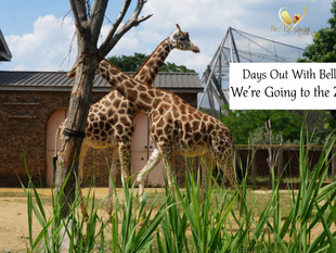 Days Out With Bella: We're Going to the Zoo!