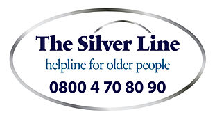 FL-the_silver_line_logo__Oct_2013-01 (1)