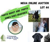 MEGA ONLINE AUCTION lot 1 (34).jpg