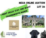 MEGA ONLINE AUCTION lot 1 (28).jpg