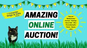 Amazing Online Auction