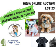MEGA ONLINE AUCTION lot 1 (12).jpg