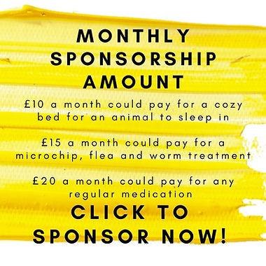 monthly sponsorship amount.jpg