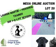 MEGA ONLINE AUCTION lot 1 (9).jpg