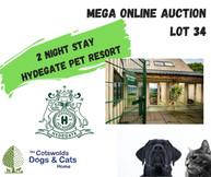 MEGA ONLINE AUCTION lot 1 (26).jpg