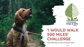 'I would walk 500 miles' challenge
