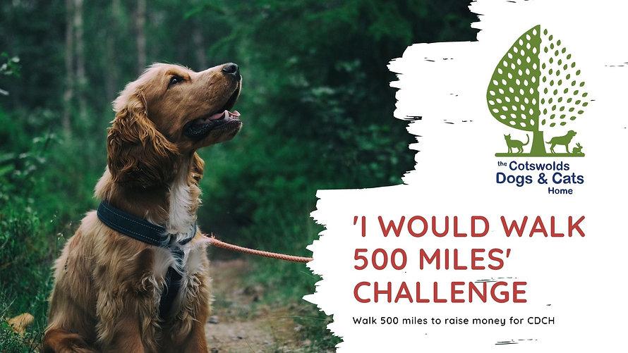 The 'I would walk 500 miles' challenge.j