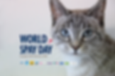 Facebook image - World spay day 2020.png