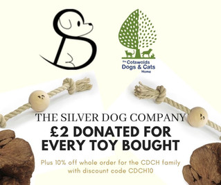 New promotion with The Silver Dog Company!