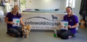 Cotswolddogspa.png