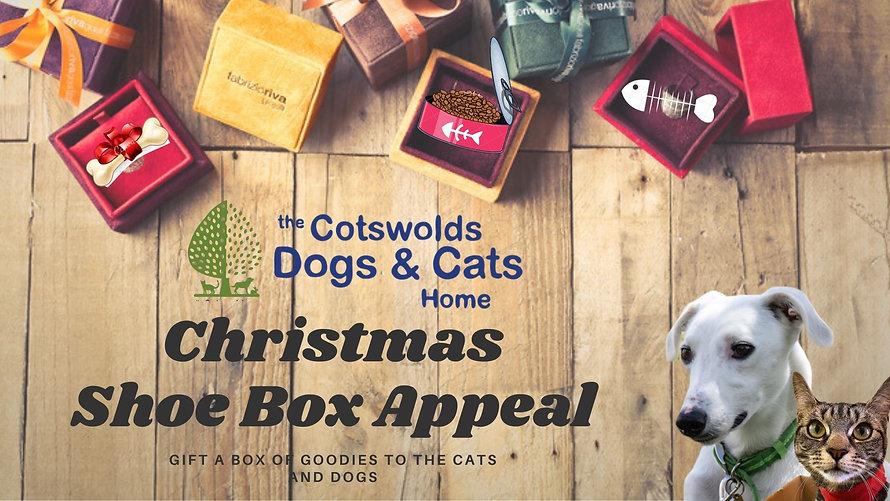 CDCH Christmas Shoe Box Appeal.jpg