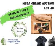 MEGA ONLINE AUCTION lot 1 (38).jpg
