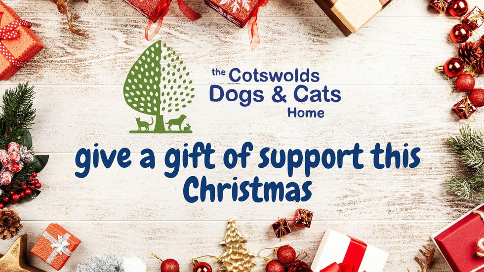 A gift of support for Christmas