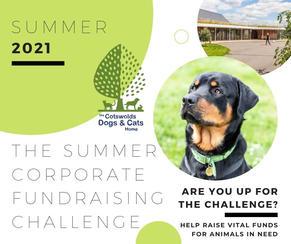 Summer Corporate Fundraising Challenge