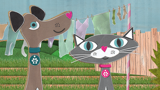 Animal Friends Pet Insurance give £5000 grant to help support our animals