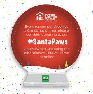 Santa Paws is coming to Pets at Home Stores