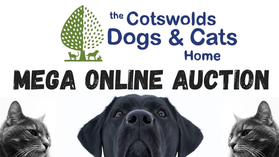 CDCH Mega Online Auction