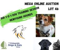 MEGA ONLINE AUCTION lot 1 (36).jpg