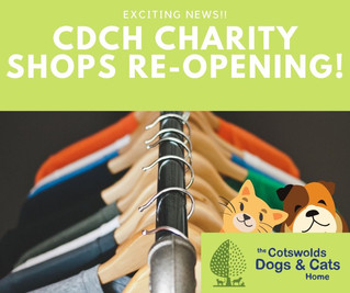 CDCH Prepare For Exciting Re-Opening Of Their Charity Shops