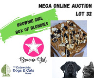 MEGA ONLINE AUCTION lot 1 (24).jpg