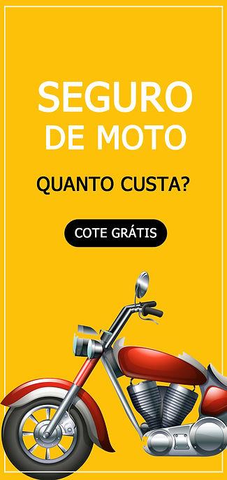 [NOVO] MODELO FAIXA VERTICAL - MOTO.jpg