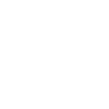 Seguro de Bicicleta (branco).png