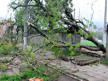 Seguro residencial cobre desastres naturais?