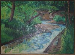 Creek near Lone Jack, Missouri