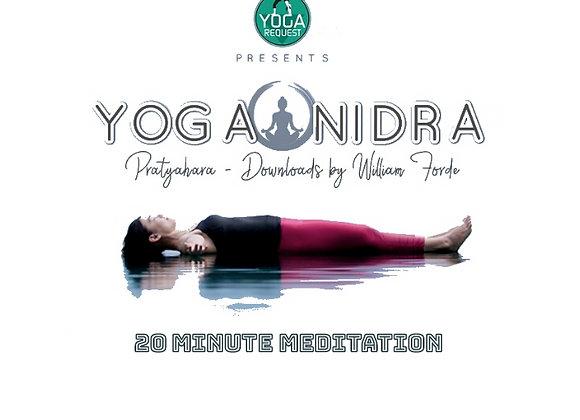 Yoga Nidra ॐ for Adults (20mins)