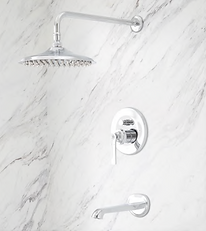 Signatures Shower and Tub Faucet