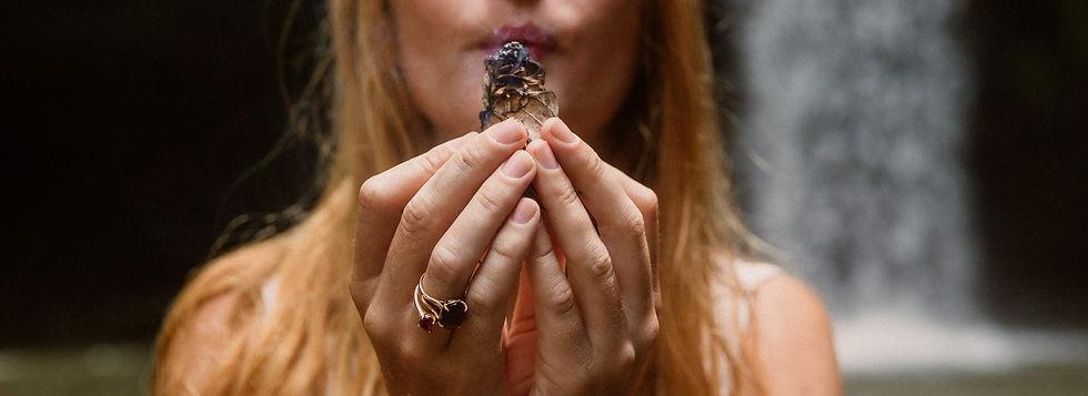 Plant medicine ayahuasca kambo rape