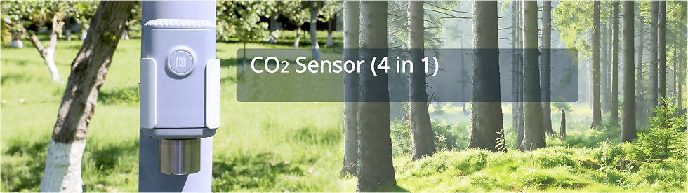Banner CO2 bossen (1).jpg