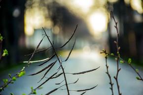 Photo_02