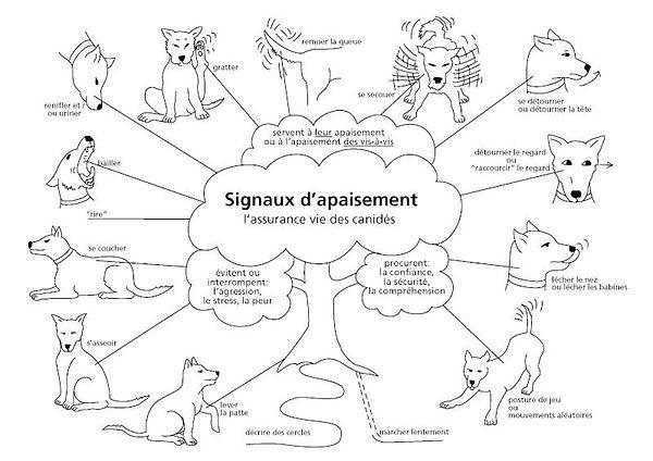 dessins-signaux-d-apaisement-1 (1).jpg