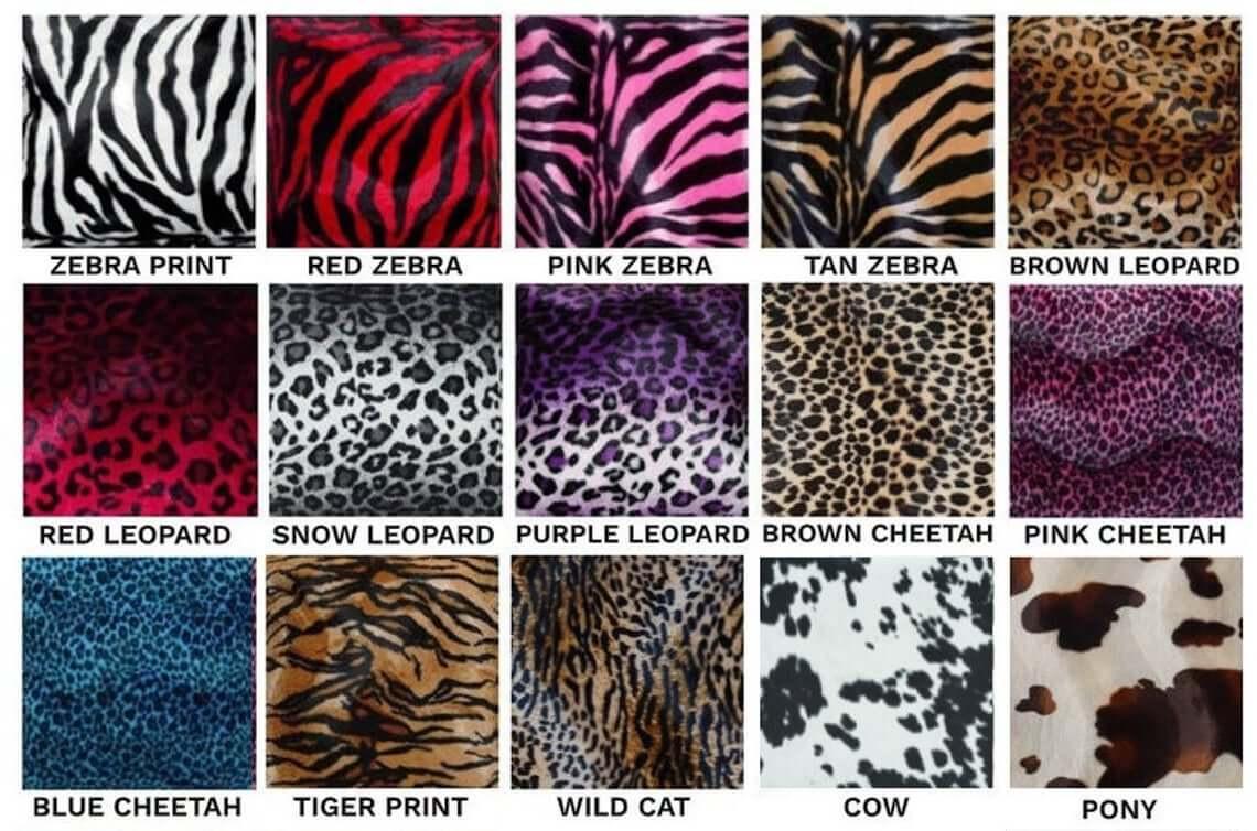 Animal Print Collection